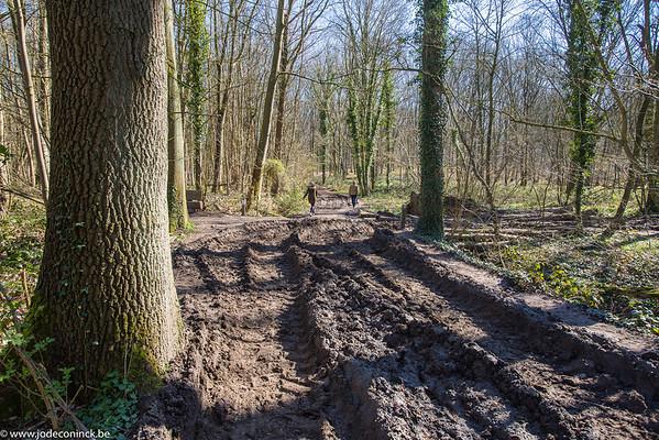 2003 Kravaalbosweg weg