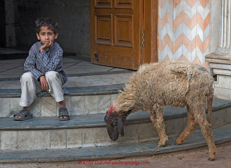 INDIA2010-0130-575A.jpg