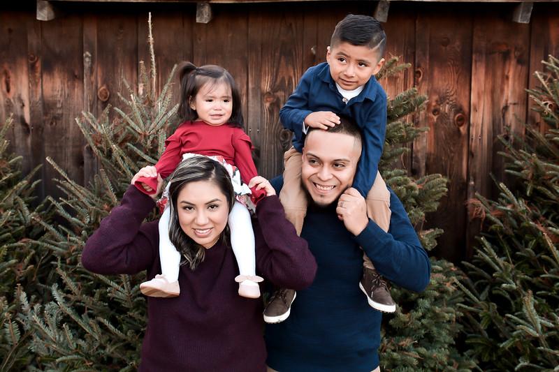 Stephanie Family 2020