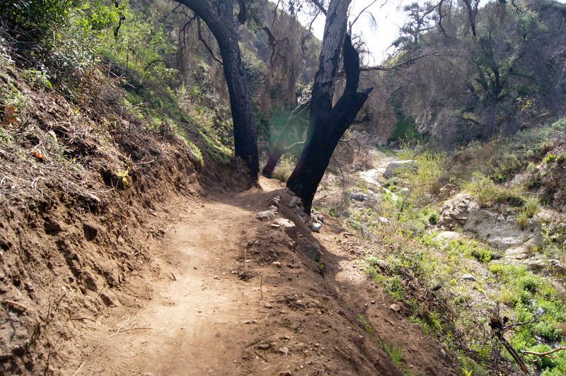 201201291637-El Prieto Trailwork.jpg