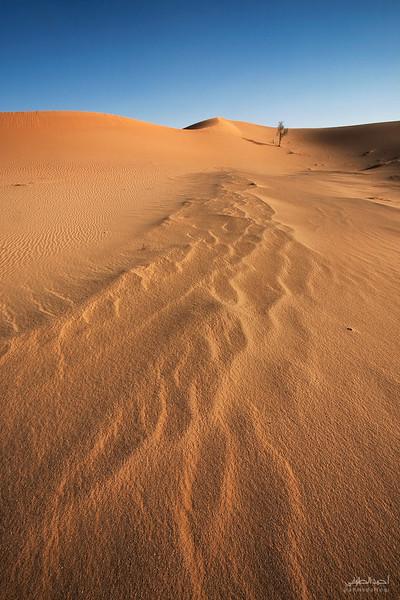 Oman Desert (35).jpg