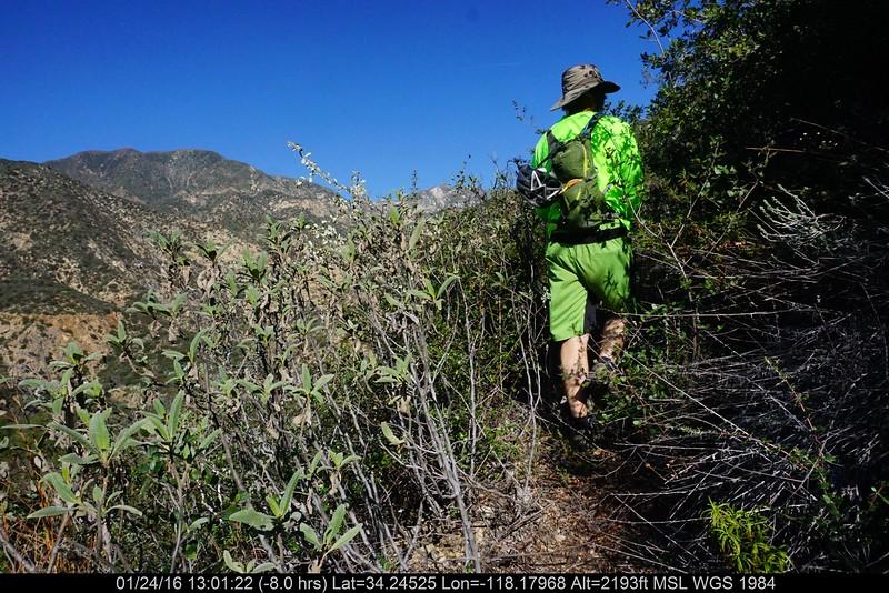 20160124036-Ken Burton Trailwork.JPG