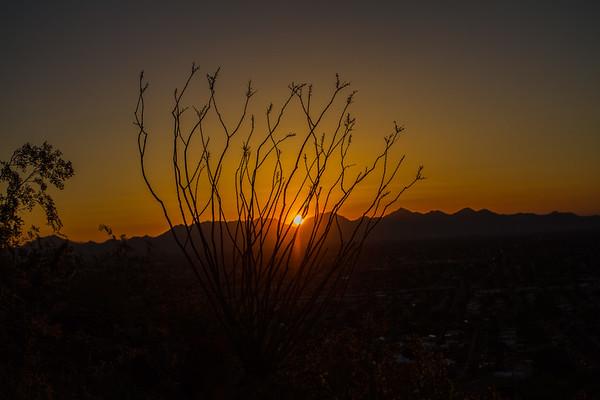 Sunrise Lookout Mnt AZ 4-17