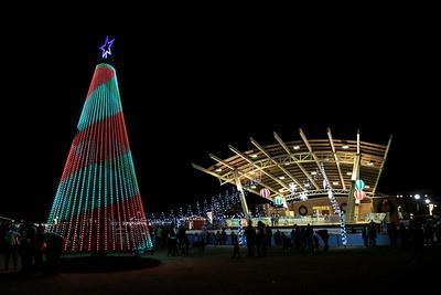 Christmas Tree Lighting 11/30/18