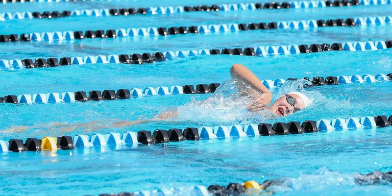 10.30.18 CSN Swim-Dive Districts-384.jpg