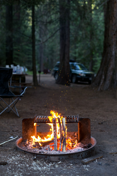 Sequoia_0718.jpg