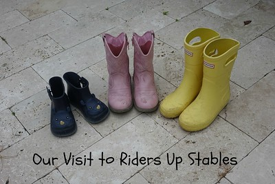 Our Visit to Riders Up Stables