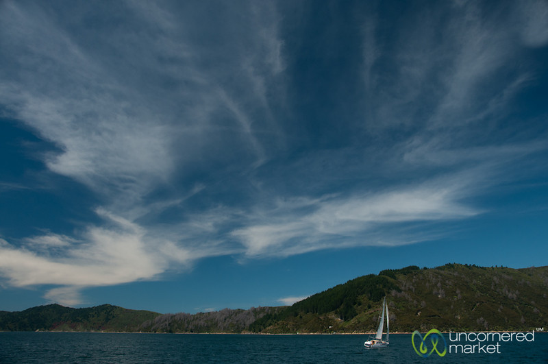 Sailboat on Queen Charlotte Sound - New Zealand