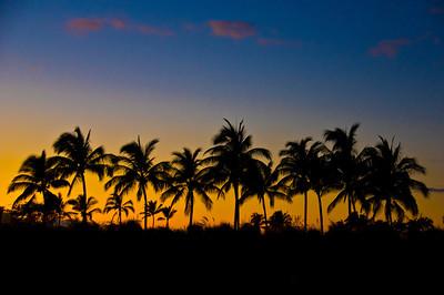 Hawaii,  February 2014