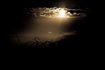 Sunrise Hike (Fremont Older) 09/24/11