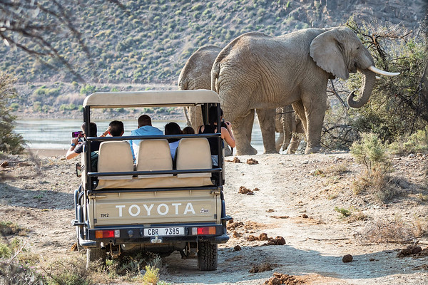 The moment I'll remember most from my African safari