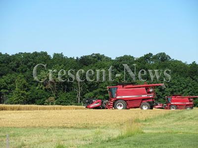 06-30-16 NEWS wheat