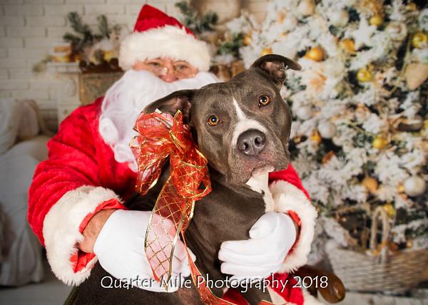 Pet Photos with Santa! 2018