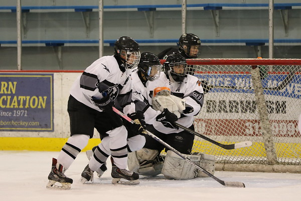 DU Hockey vs Gabriel Richard