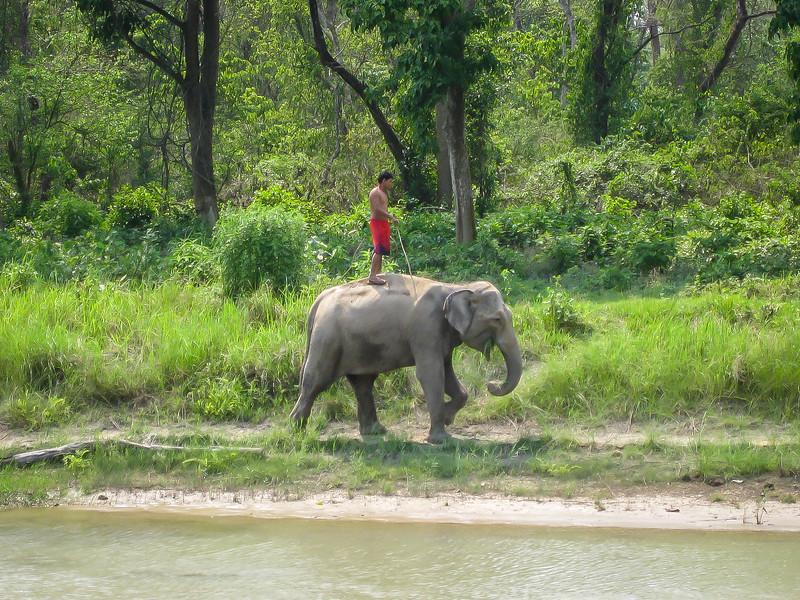 Chitwan 004.jpg