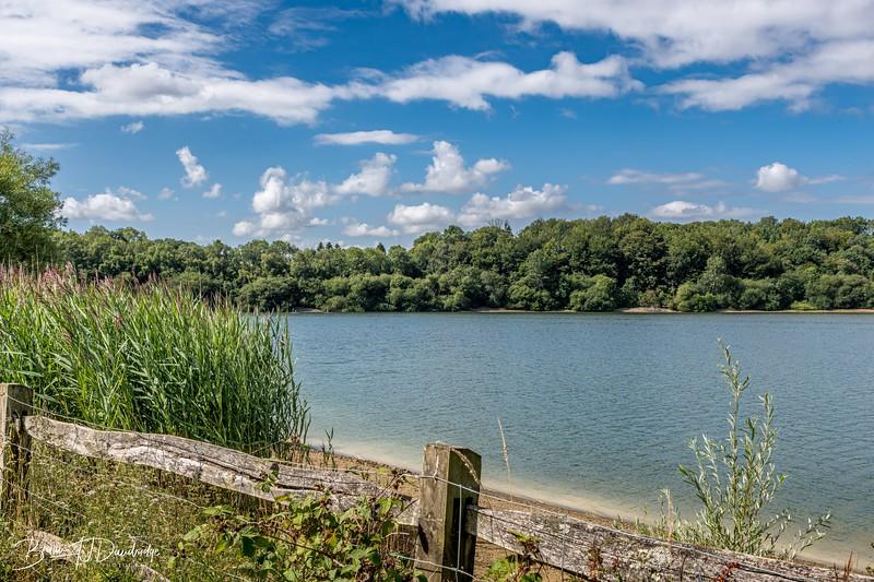 Ardingly Reservoir_D850-0349.jpg