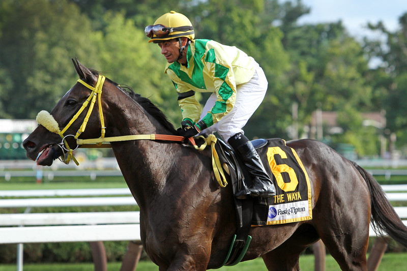 Tricky Escape (Hat Trick) and jockey Christopher DeCarlo win the Fasig-Tipton Waya (Gr III) at Saratoga Racecourse 8/12/18. Trainer: Lynn Ashby. Owner: Jon A. Marshall