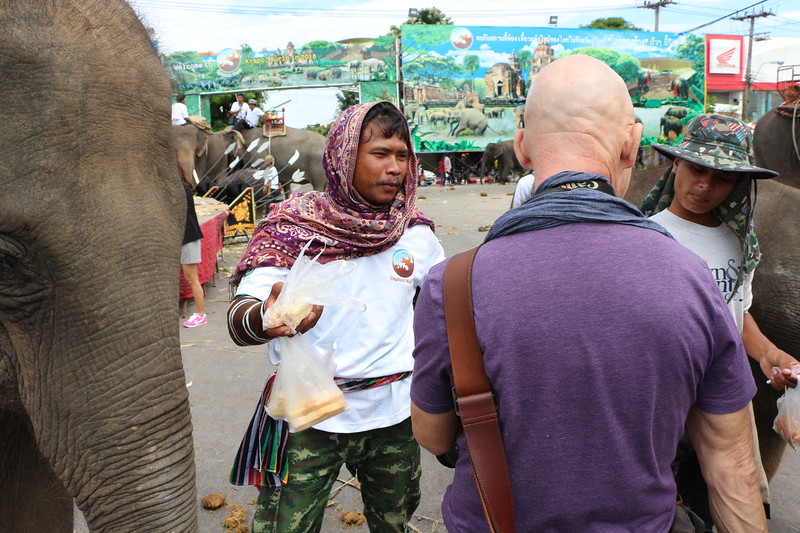 2014-11-14 Surin Elephant Welcome Feast 829.JPG
