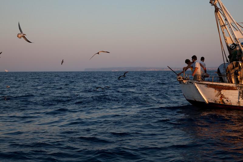 Lampedusa - Sicilia - Italia