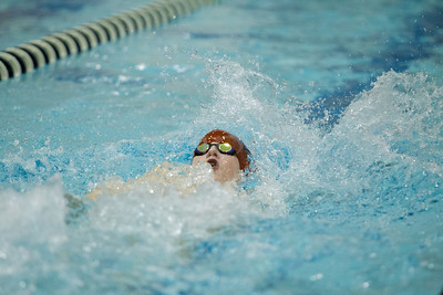 Lower Dauphin vs Red Land Swimming 2014