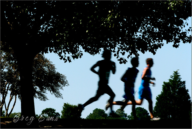 Runners are silhouetted as they compete in the McAlister's Invitational Cross Country Meet at Lake Kristi in Grimesland, N. C.