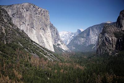 7.17.2016 / Yosemite National Park