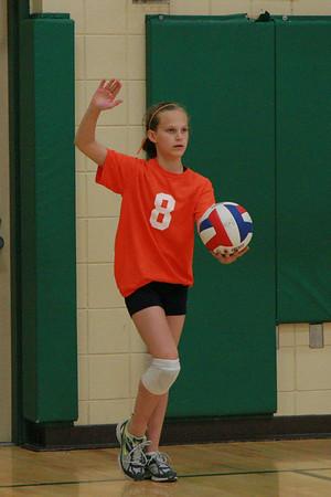 Litchfield Volleyball Tourney 050110
