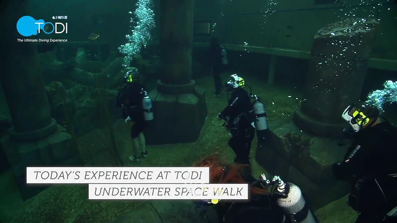 Underwater Walk Edit 45secs.00_00_00_04.Still004.jpg