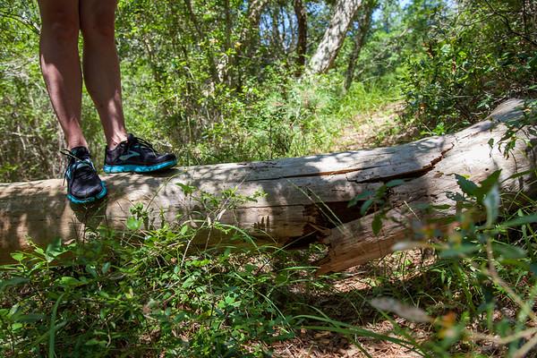 Buxton Woods Trails