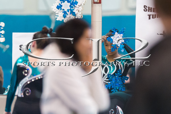 1-14-2017 Arlington Aerials Gymnastic Meet