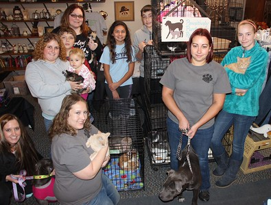 Pawsitively Purrfect Rescue Adoption Clinic, Mum's The Word, Tamaqua (11-22-2014)