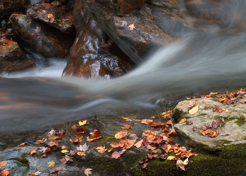rushing water  14x10 5858.jpg