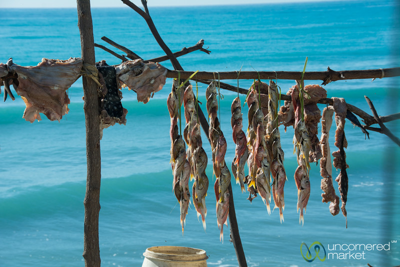 Fish Drying on the Coast near Jacmel - Haiti