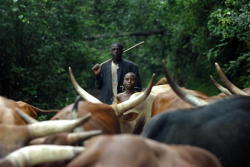070115 4395 Burundi - on the road to Karera Falls _E _L ~E ~L.JPG