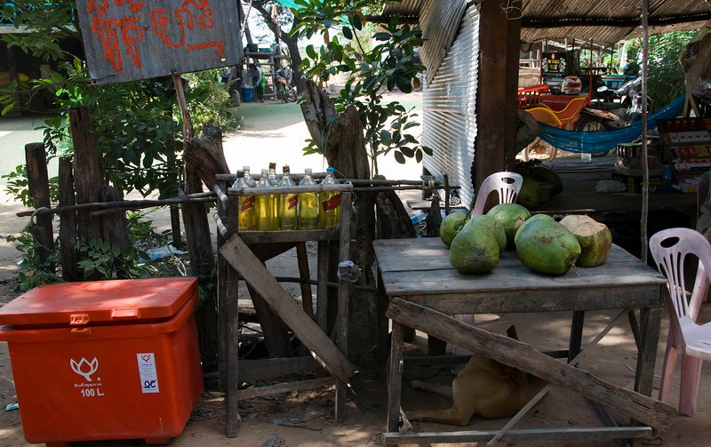 A roadside shop outside Siem Reap. This is a gas station, too-- see those Johnnie Walker Red Label bottles?