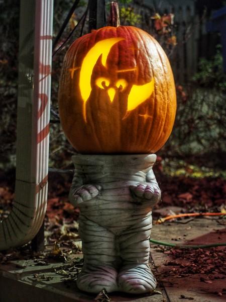 Pumpkin - J.jpg