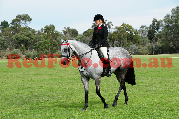 2014 08 17 Serpentine Hack and Dressage Day Hacking