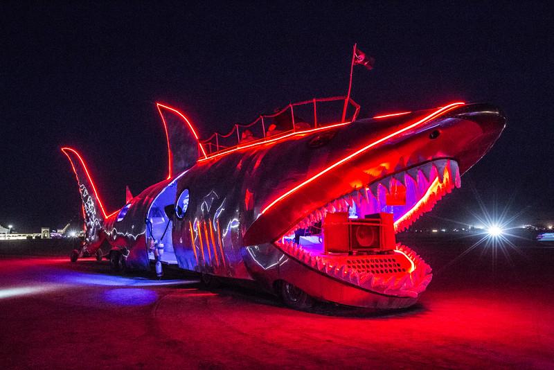 Shark Art Car