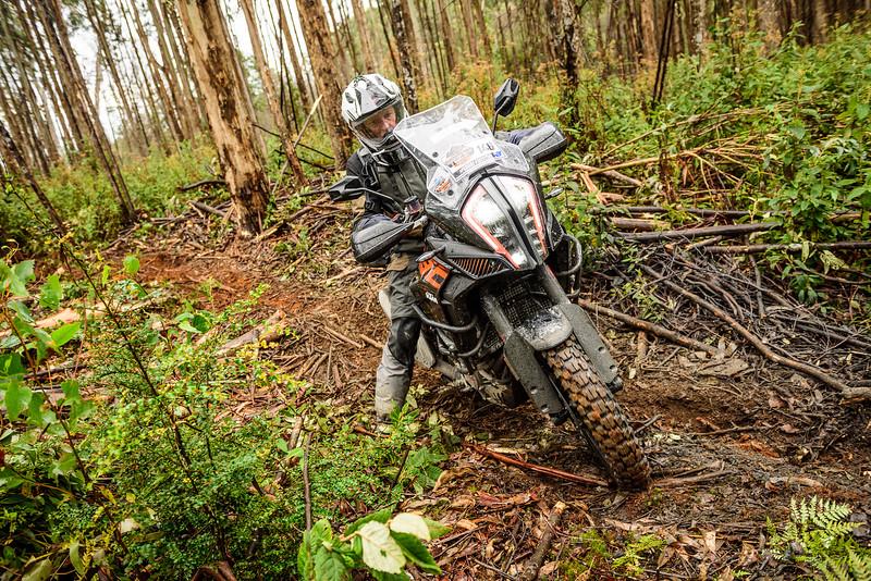 2019 KTM Australia Adventure Rallye (233).jpg
