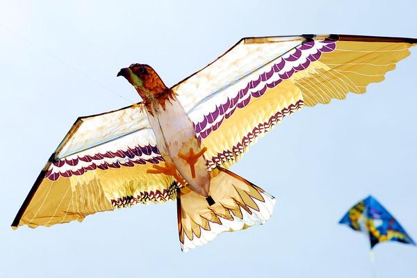 4/3/2010 Kite Day in Solomons