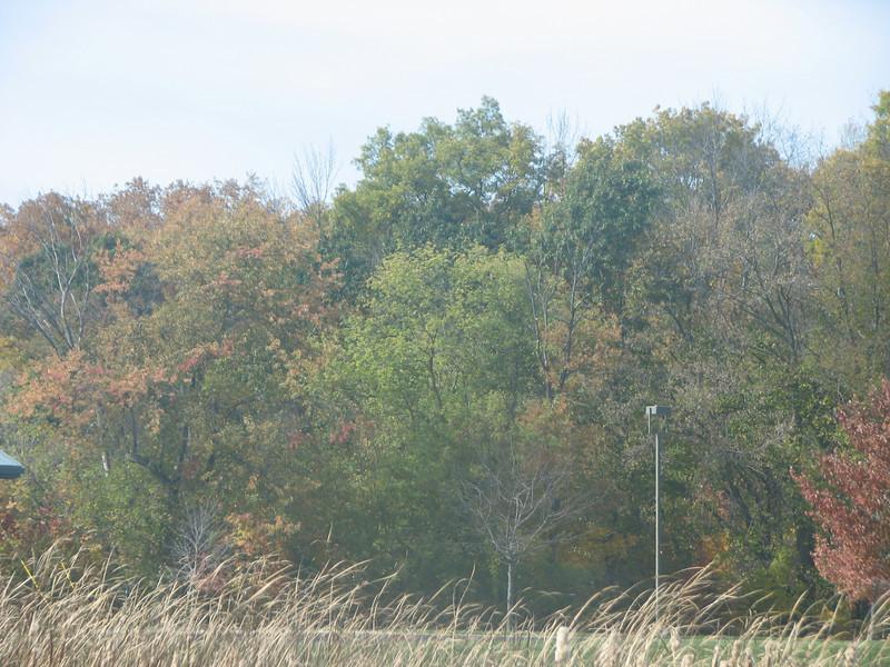 Fall pics 2008 019.jpg