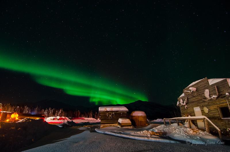 USA-Alaska-Coldfoot-Aurora-3292.jpg
