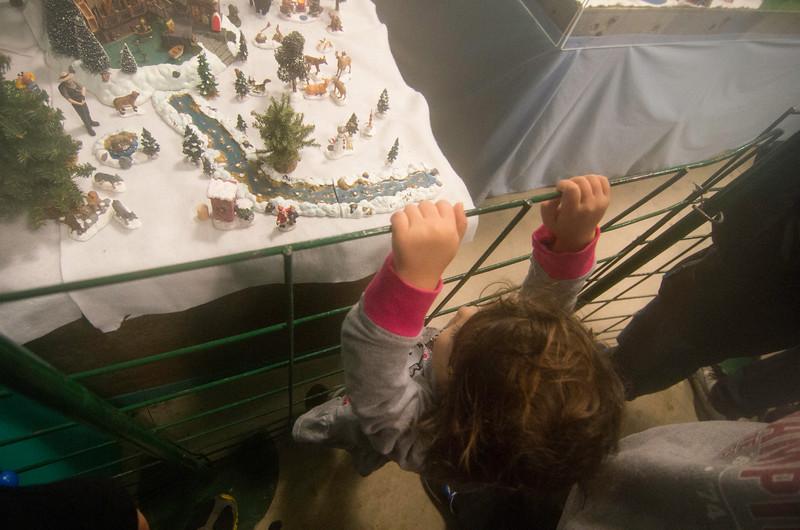 Toledo Zoo Light Show - 2014 - _CAI4534.jpg