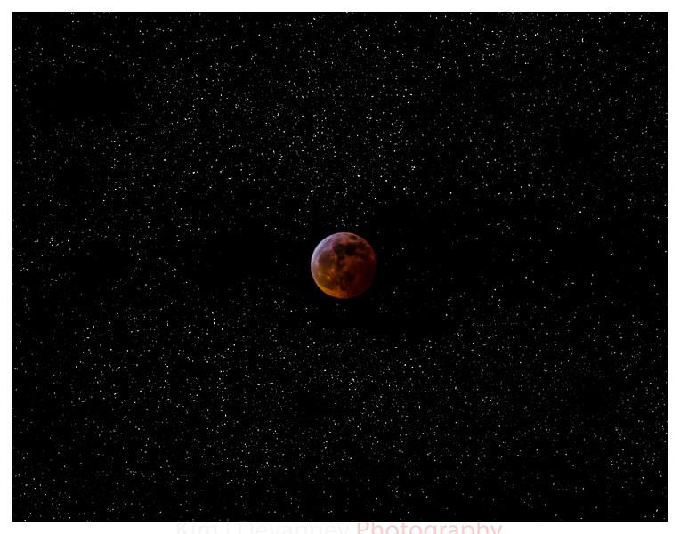 moon 11x14.jpg
