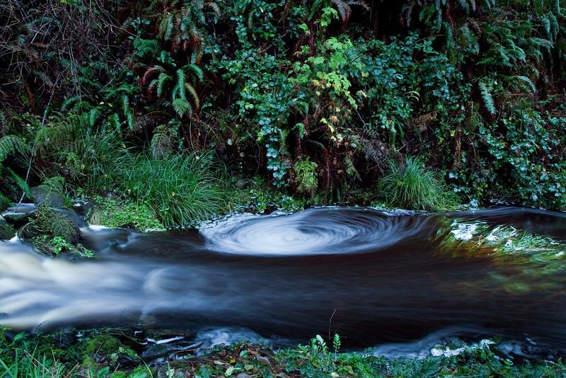 Creek at the hatchery