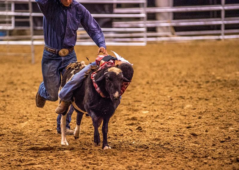 Rodeo_550.jpg