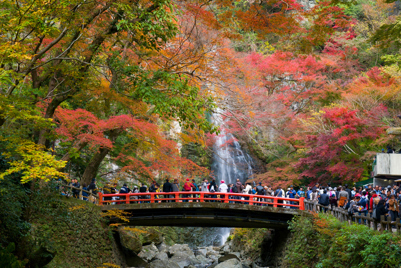 Minoh Falls. Photo Credit: NU sniper / Shutterstock.com