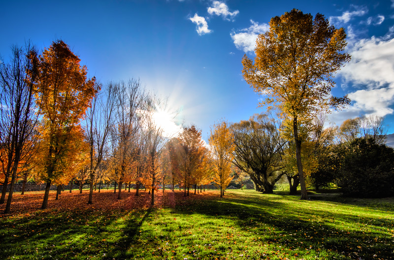 colorful-fall-queenstown-new-zealand.jpg