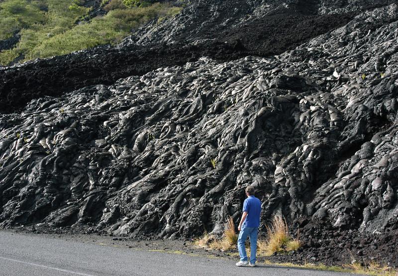 259- 20080412- Hawaii 15- Volcano Nat'l Park DSC_3126.jpg