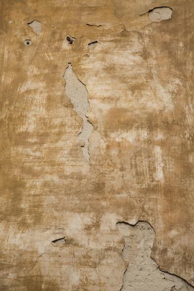 1-Lindsay-Adler-Photography-Firenze-Textures-COLOR.jpg
